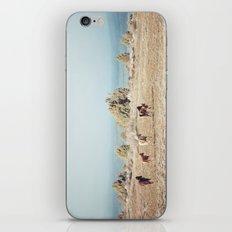 Oregon Wilderness Horses iPhone & iPod Skin