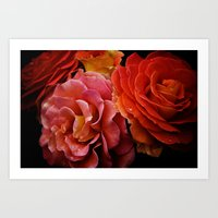 Spanish Dancer Roses Art Print