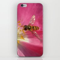 flower fly macro VII iPhone & iPod Skin