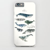 words iPhone & iPod Cases featuring Whales by Amy Hamilton