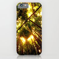 Bamboo Forest iPhone 6 Slim Case
