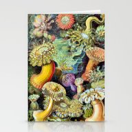 Ocean Life Too Stationery Cards