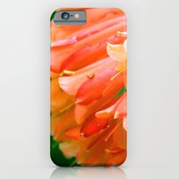 iPhone & iPod Case featuring Trumpets Blare by Samantha MacDonald