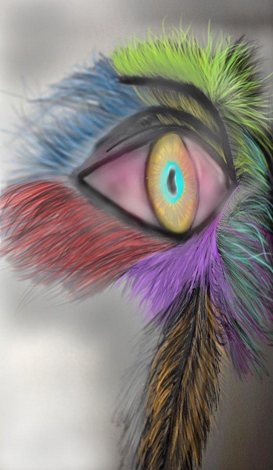 Feather Eye Art Print