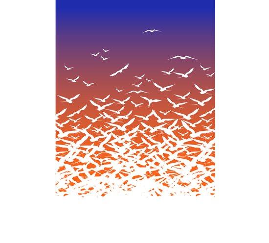 Bird Frenzy at Sunrise Art Print