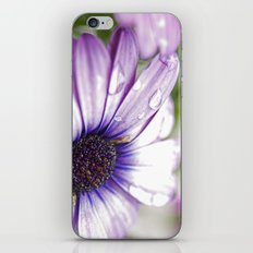 Purple Bliss iPhone & iPod Skin