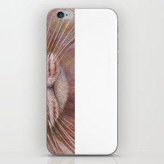 White Cat CC15-01 iPhone & iPod Skin