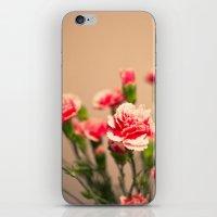 Carnation II iPhone & iPod Skin