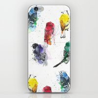 Palette Birds iPhone & iPod Skin