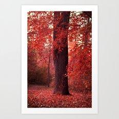 red wood Art Print