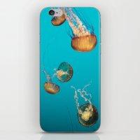 Magical Medusas iPhone & iPod Skin