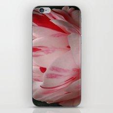 Camellia Variegation iPhone & iPod Skin