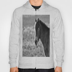 Pony on Exmoor Hoody