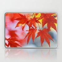 Vibrant Fall Laptop & iPad Skin