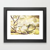 Dogwood In Bloom Framed Art Print