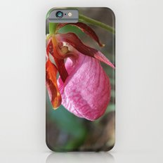 The Pink Lady Slipper iPhone 6 Slim Case