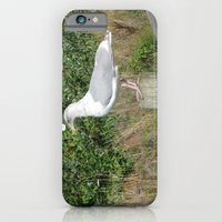 iPhone & iPod Case featuring My Buddy by grandmat