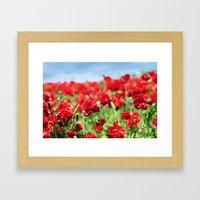 Scarlet Field Framed Art Print
