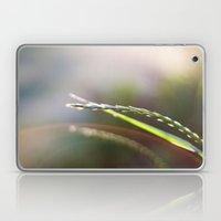 Evening Light Laptop & iPad Skin
