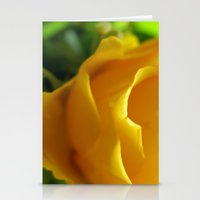 Yellow Roses #5 Stationery Cards