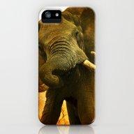 Mad Elephant iPhone (5, 5s) Slim Case
