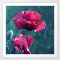 Pink Poppyfield Art Print