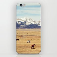 Horses on the Rockies iPhone & iPod Skin