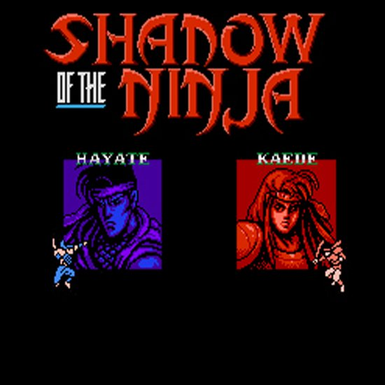 Shadow of the Ninja- Blue Shadow Art Print