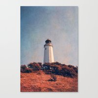 summer soul Canvas Print