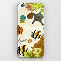The Great Barrier Reef iPhone & iPod Skin