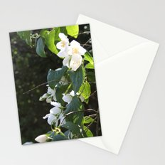 Spring Glow Stationery Cards