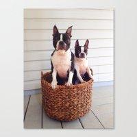 Basket Cases Canvas Print