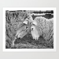 Two Of A Kind Art Print