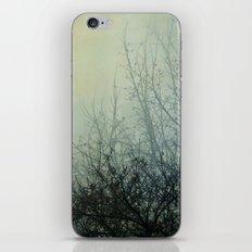 Dark Morning iPhone & iPod Skin
