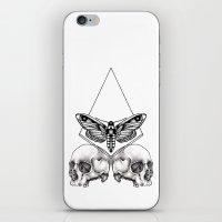 Skull Moth iPhone & iPod Skin