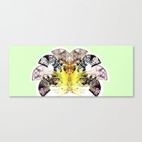 Insecte Eventail summer version Canvas Print