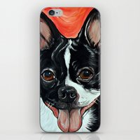 iPhone & iPod Skin featuring Boston Terrier Dog Art by WOOF Factory