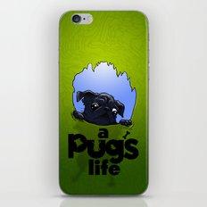 a Pug's life (dark) iPhone & iPod Skin