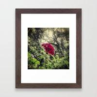 Hello, Tallahassee Framed Art Print
