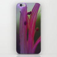 It's Getting Stamen In H… iPhone & iPod Skin