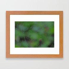 Wet Web Framed Art Print