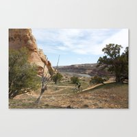 Horsethief Bench And Col… Canvas Print