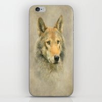 Wolf Portrait iPhone & iPod Skin