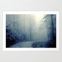 Wander in a Woodland Fog Art Print