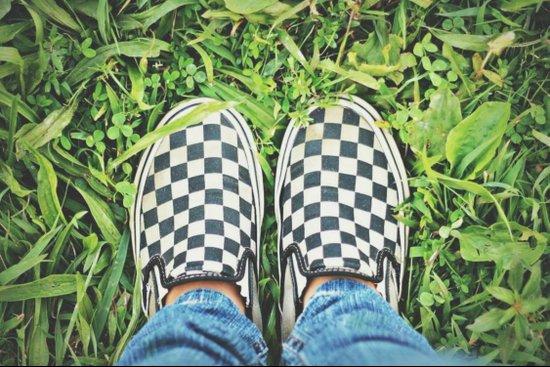 Checkered Vans Art Print