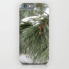 Winter Pine iPhone 6 Slim Case