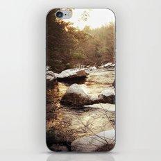 Diana in Winter iPhone & iPod Skin