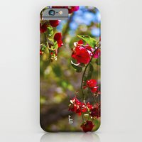 iPhone & iPod Case featuring Bougainvillea II by TS Photography