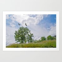 The buzzard tree Art Print