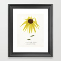 Blackeyed Susan Modern Botanical Framed Art Print